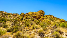 Abandonnez le paysage et les montagnes rocailleuses dans la réserve forestière de Tonto en Arizona, Etats-Unis Photo stock