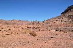 Abandonnez le paysage, montagnes de grès rouge, une plaine couverte de végétation rare de désert, un tronçon de route avec Photo libre de droits
