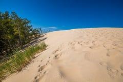 Abandonnez le paysage, parc national de Slowinski près de Leba, Pologne Images libres de droits