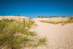 Abandonnez le paysage, parc national de Slowinski près de Leba, Pologne Photo stock
