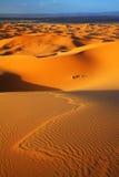 abandonnez le Sahara Photographie stock libre de droits