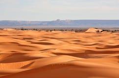 abandonnez le Sahara Image libre de droits