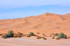 abandonnez le Sahara Image stock