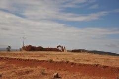 Abandonnez le sol sec, usines sur le sol de désert photo stock