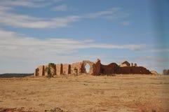 Abandonnez le sol sec, usines sur le sol de désert images libres de droits