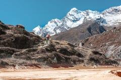 Abandonnez le terrain sur le premier plan et les montagnes sur le fond Photo libre de droits