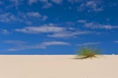 Abandonnez les dunes de sable Image stock