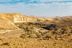 Abandonnez les falaises de crique de rivière, paysage du sud de l'Israël Photos libres de droits