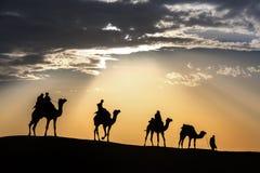 Abandonnez les promenades locales avec le chameau par le désert de Thar Images libres de droits