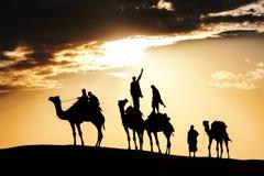 Abandonnez les promenades locales avec le chameau par le désert de Thar Photographie stock libre de droits