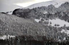 abant λίμνη Στοκ Φωτογραφίες