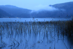 abant lake Royaltyfri Fotografi