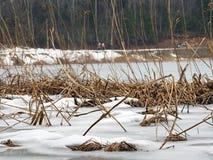 Abant sjö på vintern Royaltyfri Fotografi