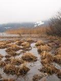Abant sjö på vintern Royaltyfria Foton