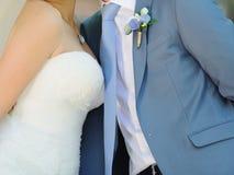 Abarcamiento de la novia y del novio Imágenes de archivo libres de regalías