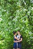 Abarcamiento de pares en fondo de la lila floreciente Fotos de archivo