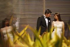 Abarcamiento hermoso de novia y del novio Fotos de archivo libres de regalías