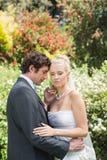 Abarcamiento romántico de los recienes casados Imagen de archivo