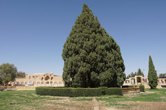 Abarkuh, Iran, Asie Image stock