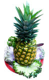 Abastecimento - abacaxi isolado Fotografia de Stock Royalty Free