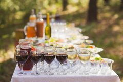 Abastecimiento al aire libre del partido o de la comida campestre Foto de archivo libre de regalías