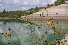 Abastecimiento de agua de disminución cargado bacterias Foto de archivo