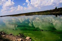 Abastecimiento de agua de disminución cargado bacterias Fotografía de archivo