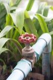 Abastecimiento de agua de la agricultura Fotos de archivo