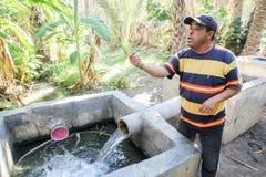 Abastecimiento de agua en oasis Imagen de archivo