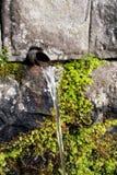 Abastecimiento de agua libre fresco de la corriente local Fotografía de archivo
