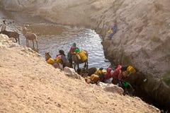 Abastecimiento etíope de la mujer y de agua Imagen de archivo
