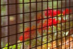 Abat-jour de bambou Photos libres de droits