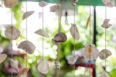 Abat-jour de rideaux de diverses coquilles de mer Photos stock