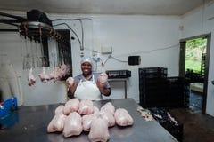 Abattoir de volaille d'emballage Photo libre de droits