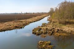 Abava flod i Lettland Arkivbilder