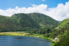 Abbai nel lago Toba con le risaie, il paesaggio indonesiano, S del nord Immagine Stock