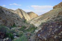 Abbandoni i wadi in Negev alla molla, Israele. Fotografie Stock
