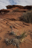 Abbandoni il paesaggio con vegetazione rada vicino a Glen Canyon Fotografia Stock