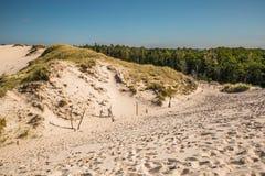 Abbandoni il paesaggio, parco nazionale di Slowinski vicino a Leba, Polonia Fotografia Stock