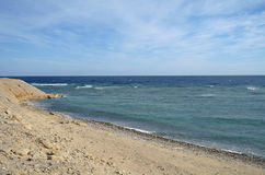 Abbandoni la regione del mare della baia in rosso, il Sinai, egitto Fotografie Stock Libere da Diritti