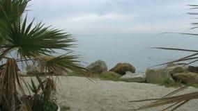 Abbandoni la spiaggia alla località di soggiorno soleggiata esotica con il clima tropicale Turismo di crociera di estate video d archivio