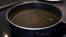 Abbassamento del canestro dei gamberetti in olio per friggere stock footage
