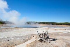 Abbassi il bacino del geyser Immagini Stock