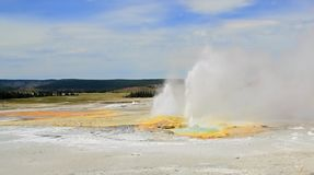 Abbassi il bacino del geyser, il parco nazionale di Yellowstone, Wyoming, U.S.A. fotografia stock libera da diritti