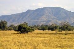 Abbassi il paesaggio dello Zambezi Immagini Stock