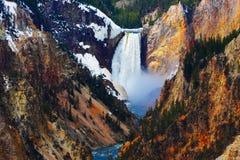 Abbassi le cadute del Yellowstone Fotografia Stock Libera da Diritti