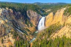 Abbassi le cadute di Grand Canyon del parco nazionale di Yellowstone Immagine Stock
