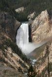 Abbassi le cadute il fiume Yellowstone immagini stock libere da diritti