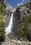 Abbassi Yosemite Falls Immagini Stock Libere da Diritti