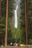 Abbassi Yosemite Falls fotografia stock libera da diritti